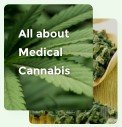 All About Medical Cannabis