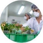 Innovative Technology for <br>Agriculture & Medicine